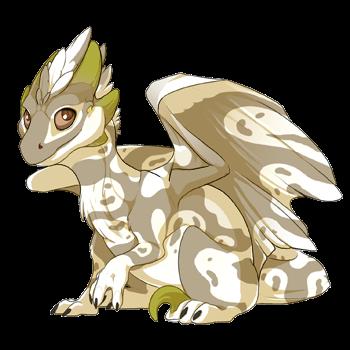 dragon?age=0&body=1&bodygene=23&breed=10&element=1&gender=0&tert=1&tertgene=0&winggene=23&wings=1&auth=553fc02f93cec684f8d43a92bd7a6f5636838cdd&dummyext=prev.png