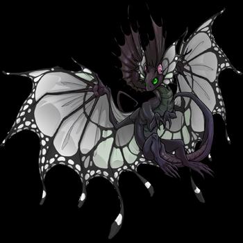 dragon?age=1&body=12&bodygene=1&breed=1&element=10&eyetype=0&gender=1&tert=71&tertgene=0&winggene=13&wings=5&auth=291107300b00cf08e590428e3d25a0a2f22a0dee&dummyext=prev.png