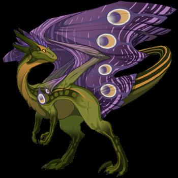 dragon?age=1&body=173&bodygene=15&breed=10&element=8&eyetype=1&gender=0&tert=97&tertgene=24&winggene=21&wings=119&auth=61986104de0c2e4225dec4456eecaf83c84643f5&dummyext=prev.png