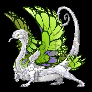 dragon?age=1&body=2&bodygene=7&breed=12&element=3&gender=1&tert=2&tertgene=10&winggene=13&wings=39&auth=c378fc7a4ae6b112c8cdd54d0ad7164624bf82bb&dummyext=prev.png