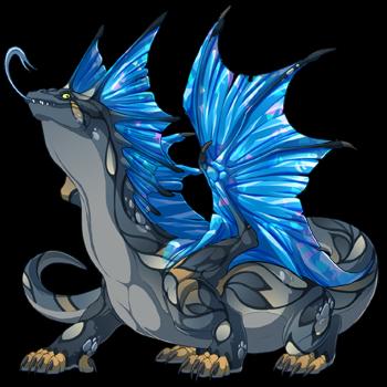dragon?age=1&body=25&bodygene=13&breed=14&element=3&gender=0&tert=29&tertgene=0&winggene=8&wings=28&auth=bfa3eca4b3b6eb732dfa3dce1b8238e7b37a4ebb&dummyext=prev.png