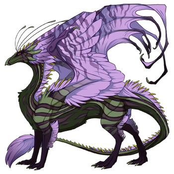 dragon?age=1&body=35&bodygene=22&breed=13&element=1&eyetype=0&gender=0&tert=40&tertgene=8&winggene=18&wings=15&auth=0910c0e44f214d8e08fca943e7ce3dca99187662&dummyext=prev.png