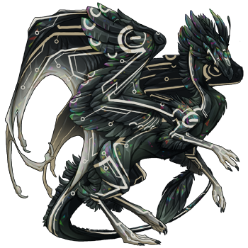 a feathery black dragon with pale circuit markings