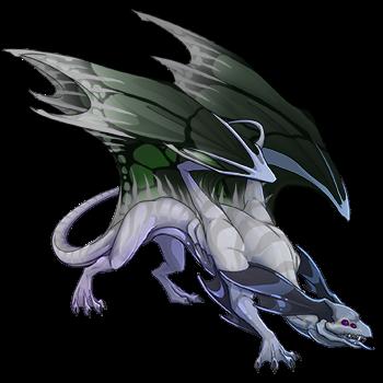 L'antre de Ninja Zorua : Nouvelle portée du 11 / 08 / 2017 ! 34482927_350